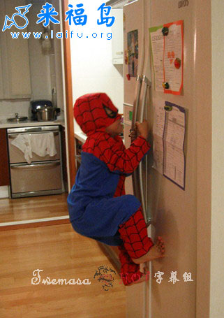 spiderman-training