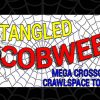 Cobwebs #38: The Tangled-Cobwebs Mega Event Continues!  Top 50 Greatest Spider-Man Stories Counting Down #30-21.